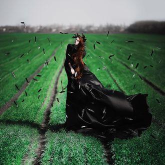 Фото Девушка в черном платье стоит на зеленой лужайке в окружении летающих черных перьев, фотограф Екатерина Троян