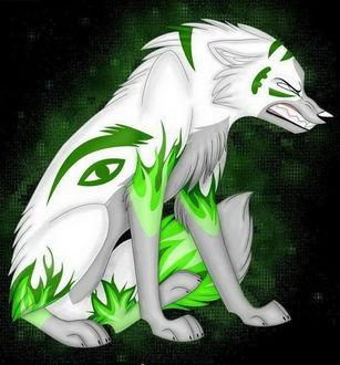 Фото Рисунок белого волка