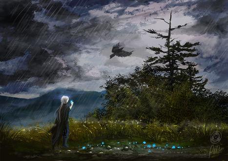 Фото Человек идет под дождем по дороге со светящимися растениями, by Рin100