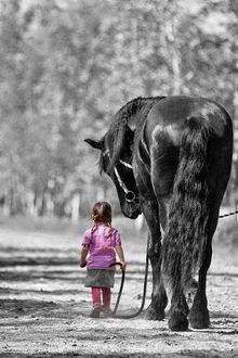 Фото Маленькая девочка и Черный конь идут по дороге