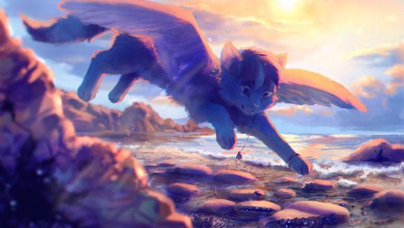 Фото Крылатый котенок пролетает над морским берегом, by krooku