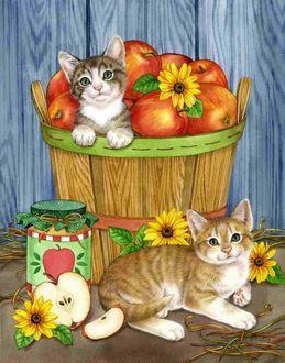 Фото Кошка сидит в лукошке с яблоками, вторая кошка лежит рядом, работа художника Jane Maday