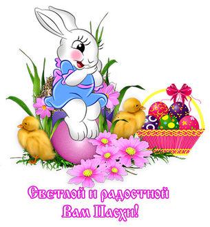 Фото Белый кролик сидит на пасхальном яйце, рядом два утенка и корзина с пасхальными яйцами (Светлой и радостной вам Пасхи!)