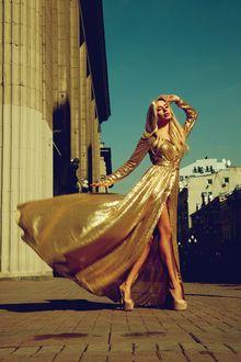 Фото Девушка в парчовом платье