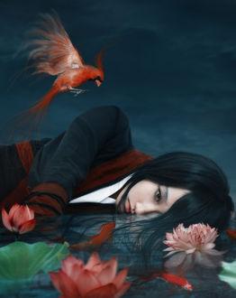 Фото Девушка, одетая в традиционную одежду, со связанными руками лежит в воде, в которой плавают рыбки, над ней летает птица