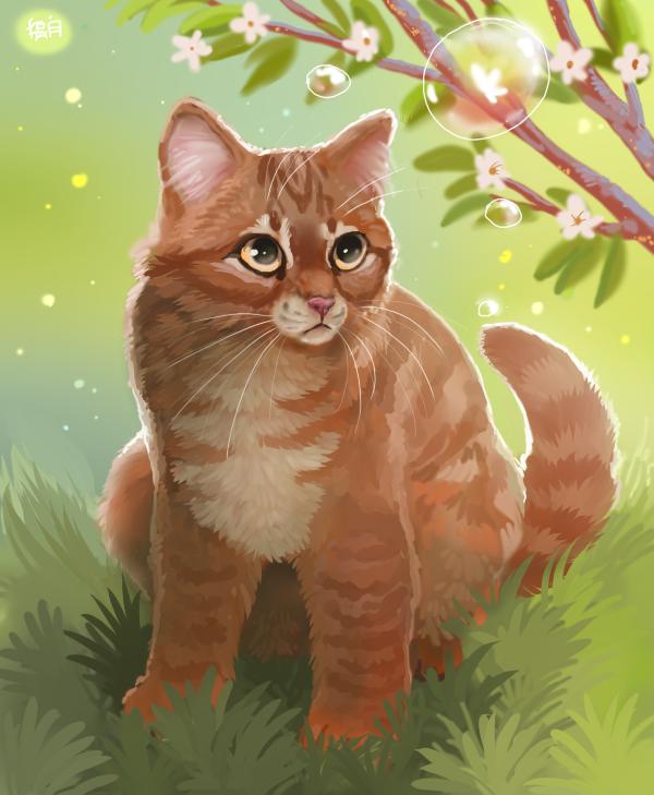 этим картинки рыжего кота с зелеными глазами мультяшного его удивительных флаконах