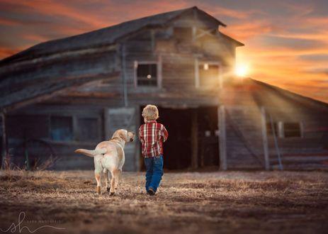 Фото Мальчик с собакой идет к дому, на фоне захода солнца, by Sara Hadenfeldt