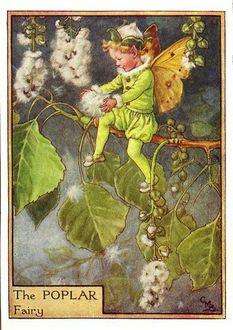 ���� ��������� ���� ����� �� ����� ������ � �������� � ��������� ����� (The Poplar fairy)