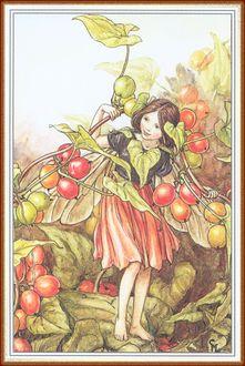 Фото Девочка-эльф гуляет по зарослям ягодного кустрарника