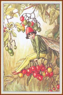 Фото Мальчик-эльф качается на ветке дерева, наблюдая за кем-то