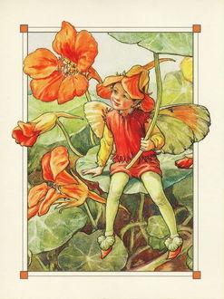 Фото Мальчик-эльф сидит на прекрасных цветах