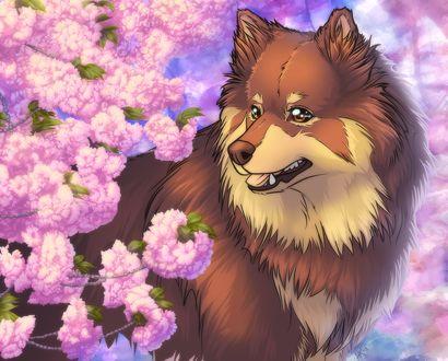 Фото Собака стоит возле цветущих веток дерева, by Henu