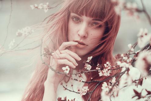 Фото Модель Francesca Moro стоит у цветущей ветки, фотограф Alessio Albi