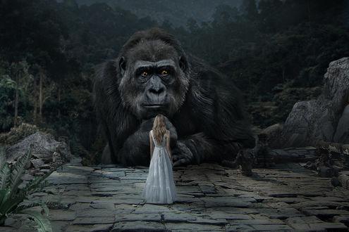 ���� ������� ����� ����� King Kong / ���� ������, by JoeDiamondD
