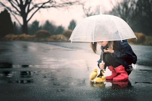 Фото Девочка сидит под зонтом с утятами, by Clare Ahalt