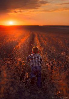 Фото Мальчик бежит в поле на фоне садящегося солнца, by Jake Olson