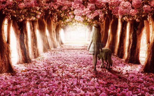Фото Девочка с собакой прогуливается по аллее, усыпанной опавшим цветом деревьев