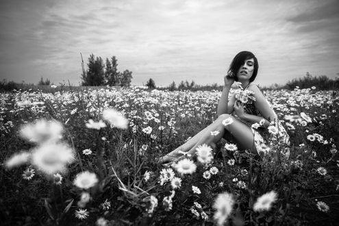 Фото Девушка на ромашковом поле фотограф Ferdinand Studio