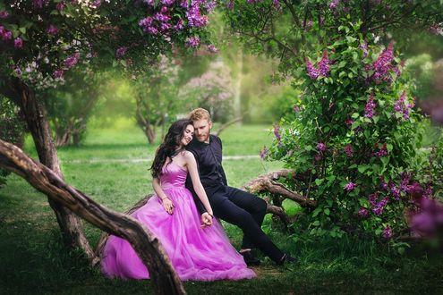 Фото Девушка в сиреневом платье и мужчина в черном костюме сидят на ветке сирени, фотограф Саша Тихова