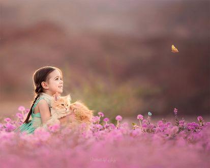 Фото Девочка держит рыжего кота на руках, сидя в розовых цветах, смотря на бабочку, by Suzy Mead