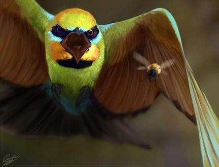 Фото Птица с открытым клювом перед насекомым, by CarolinaLang