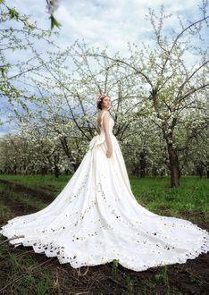 Фото Девушка в белом платье стоит на фоне цветущих деревьев