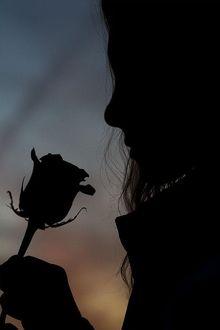 Фото Девушка на закате держит цветок