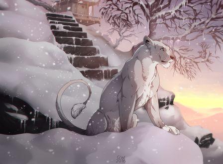 ���� ����� ��� ����� �� ������� � �������� ������� � ������ � �����, by Grypwolf