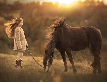 Фото Девочка стоит с лошадью, фотограф Elena Shumilova