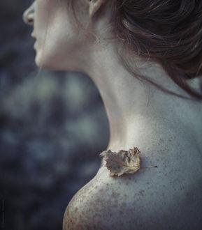 Фото Обнаженное плечо девушки с сухим листиком, фотограф Magdalena Russocka