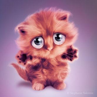 Фото Пушистый котенок с грустными глазами, by Stephanie VALENTIN