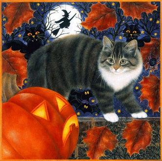 Фото Серая кошка стоит на заборе и смотрит на тыкву, в которой прорезаны отверстия для глаз и рта на фоне черных летучих мышей и луны с ведьмой на метле, by Anne Mortimer