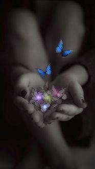 Фото Женские руки и вылетающие бабочки