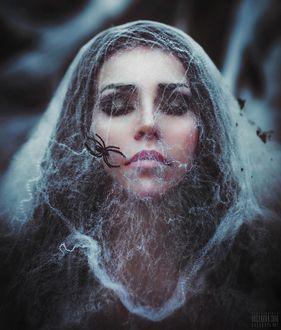 Фото Девушка с паутиной на лице, на которой сидит паук, фотограф Светлана Беляева