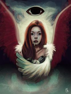 Фото Девушка с крыльями прикрыла птиц крылом, by fravenmort