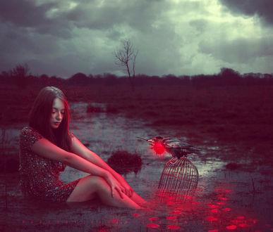 Фото Девушка сидит в воде перед клеткой, на которой сидит ворон с кроваво-красной розой в клюве, by ObscureLilium
