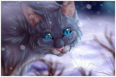 Фото Красивая голубоглазая кошка на снегу