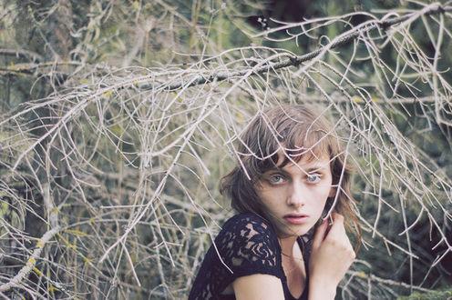 Фото Девушка под сухими ветками дерева, Фотограф Isabella Bubola