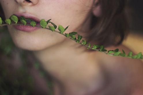 Фото Девушка поднесла к губам ветку с маленькими листочками, фотограф Isabella Bubola