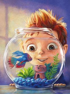 Фото Мальчик смотрит на аквариум, в котором плавает рыбка, by Howard McWilliam