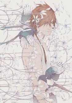 Фото Парень в окружении птиц и цветов, by tincek-marincek