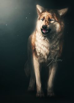 ���� ������������ ���� �� ������ ����, by Safiru