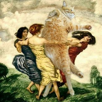 Фото Девушки водят хоровод вокруг огромного рыжего кота