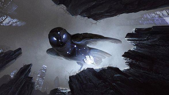 Фото Сова со светящимися в темноте глазами стоит на скале, держит в лапе украденный свет, вокруг видны высотные дома со светящимися окнами