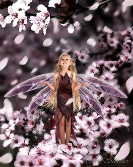 Фото Маленькая девочка - фея в окружении цветков вишни, арт Susan Schroder
