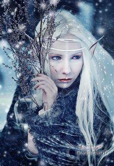 Фото Белокурая девушка с эльфийскими ушами и сухой веткой