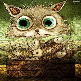 Фото Кот с ошалевшими от счастья зелеными огромными глазами, среди полной посудины рыбы, by berkozturk