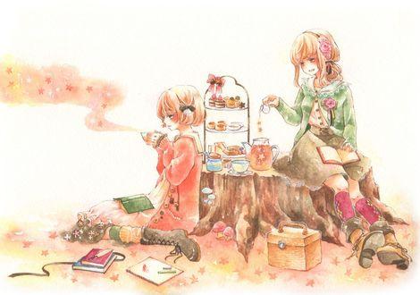 Фото Две девушки на пеньке пьют чай со сладостями