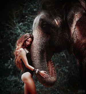 Фото Девушка в купальнике стоит рядом со слоном, фотограф Светлана Беляева