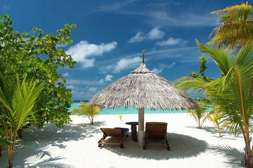 Фото Тропический рай, два шезлонга под навесом среди пальм с видом на океан